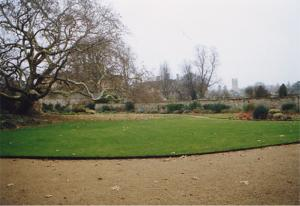The chosen site in the Peacock Garden, Christ Church, before installation of the 20th century dial